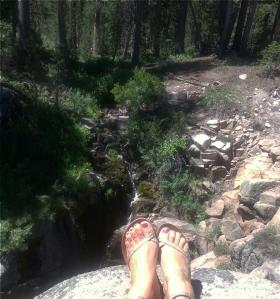 sonora feet